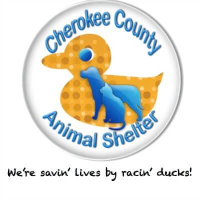 Duck Race Cherokee County - Townelaker