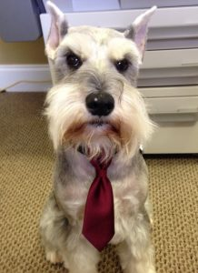 TowneLaker Buster in a tie